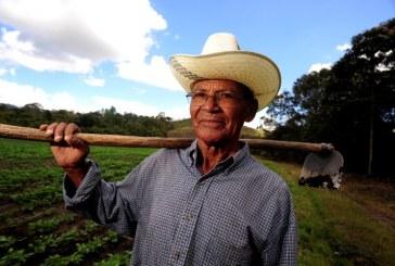 Ferenc pápa 25 ezer dollárral segíti fejenként az őslakosokat és a földműveseket