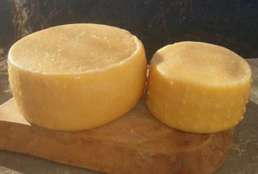 Trappista sajtokat vizsgáltak