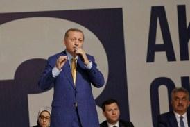 Erdogan megint pártelnök
