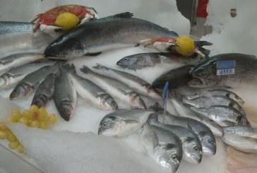 Drágább lesz a hal