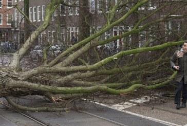 Vihar söpört végig Belgiumon